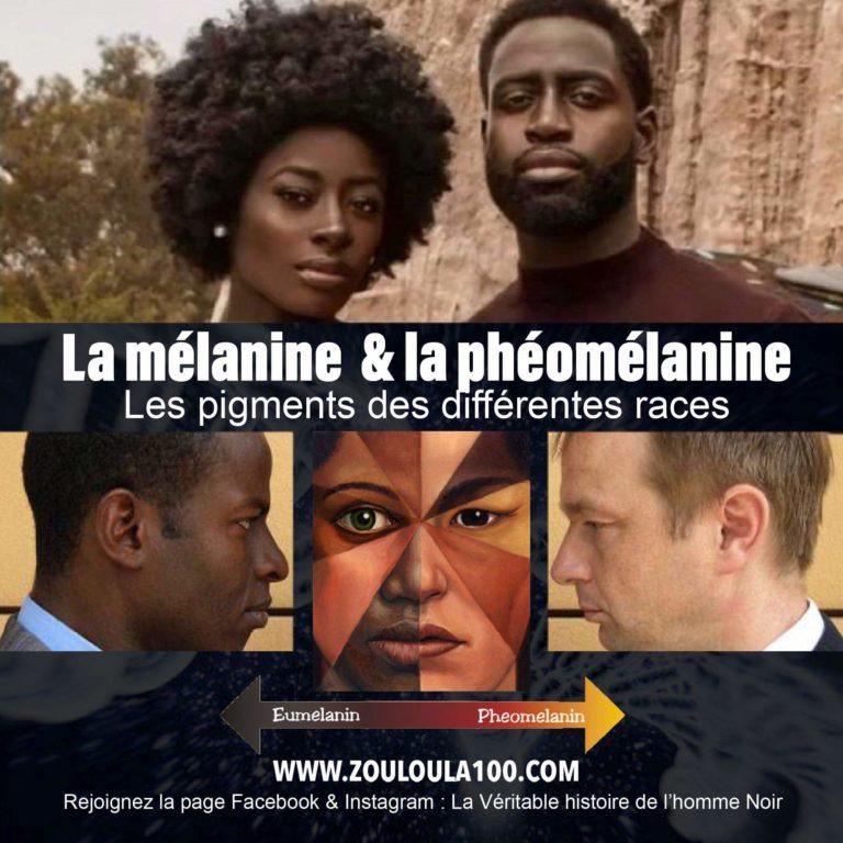 Les pigments des différentes races